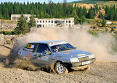 Rally 2010 degli urali meridionali — Foto Stock