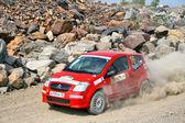 Rally Southern Ural 2010 — Stock Photo