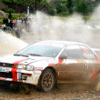 Rally Southern Ural 2009 — Stock Photo