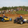 Cross-country buggy race — Stock Photo #8979780