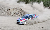 Rally Southern Ural 2011 — Stock Photo
