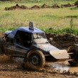 Cross-country buggy race — Stock Photo
