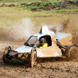 Stock Photo: Cross-country buggy race
