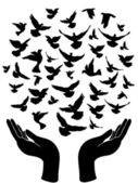 Hands releasing peace pigeon — Stockvector