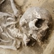 Real human skeleton exhumed - Stock Photo