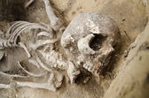 Real human skeleton exhumed — Stock Photo