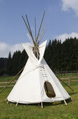 American teepee on the meadow — Stock Photo