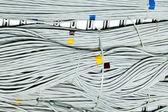 Netzwerk-kabel-konzept — Stockfoto