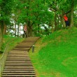 Wood stairs in a park — Stock Photo