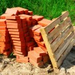 Red bricks on pallet — Stok Fotoğraf #10565428