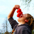 Royalty-Free Stock Photo: Boy with tomato