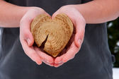 A guy with a heart in his hands — Stock Photo