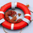 Lifebuoy ring — Stock Photo