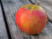Apple varieties CHAMPION — Stockfoto