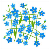 Forget-me-not pattern — Stock Vector