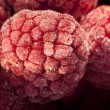 Frozen raspberries — Stock Photo #8233383