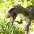 Stock Photo: Dinosaur