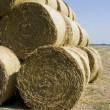 Hay Bale Landscape — Stock Photo