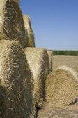 Hay Bale Landscape — Stock Photo