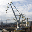 Cranes and Ships — Stock Photo
