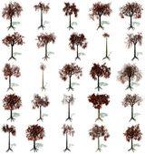 Conjunto de árboles otoñales — Foto de Stock