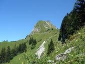Alps, Switzerland — Stock Photo