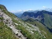 Zwitserse Alpen in de zomer — Stockfoto