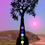 Chakras in meditation under a tree — Stock Photo