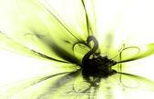 Cygne noir — Photo