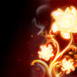Stock Photo: Fire Flower