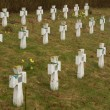 Old military cemetery - Foto Stock