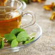 Tea cup with fresh mint leaves — Stock Photo