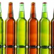 Beer bottles isolated on white background — Stock Photo #9384046