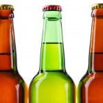 Beer bottles isolated on white background — Stock Photo