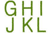 Green leaves alphabet — Stock Photo