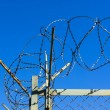 Mesh fence with barbed wire — Stock Photo