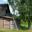 Stock Photo: Old rural house and barn