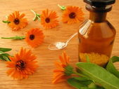 Marigold flowers and homeopathic pills — Stock Photo
