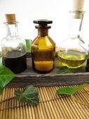 Murgröna i naturen läkande — Stockfoto