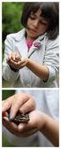 žába a dívka — Stock fotografie