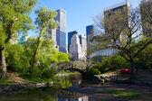 Central Park — Stockfoto