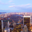 New York City Central Park aerial view — Stock Photo