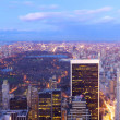 Royalty-Free Stock Photo: Central Park aerial view panorama