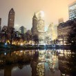Central Park and Manhattan skyline — Stock Photo #9355502