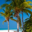 Tropical beach — Stock Photo #8635577