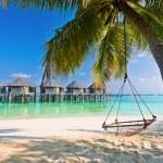 Пляж гамак под пальмами — Стоковое фото