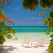 tropical beach — Stock Photo #8635725