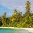Tropical beach — Stock Photo #8635848