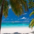 Stock Photo: Beautiful Tropical Beach