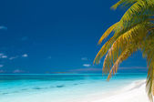 Beautiful unspoilt tropical beach — Stock Photo